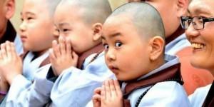小和尚問師父:人生最大的價值是什麼?師父用簡單的道理來回答...