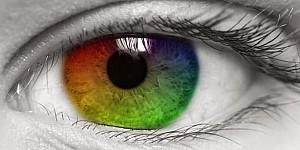 著名的貝漢轉盤,你第一眼看到的顏色決定你的人格特質