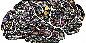 你哪樣的思維模式最出色?